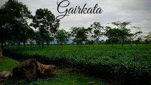Gairkata- A Hidden Hamlet in Dooars