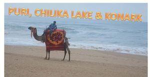 CHERISH THE BEAUTY OF ODISHA - PURI, CHILIKA LAKE & KONARK