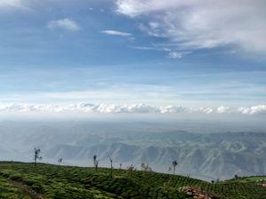 Kodanad! - A serene hilltop on Nilgiris range