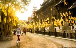 The other side of Thailand : Chiang Mai