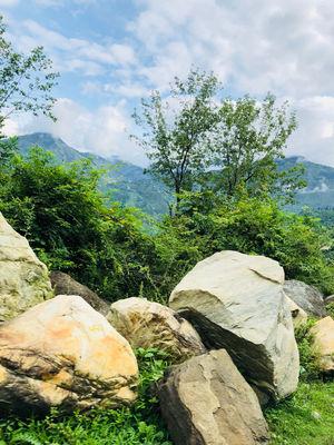 Trip to jibhi
