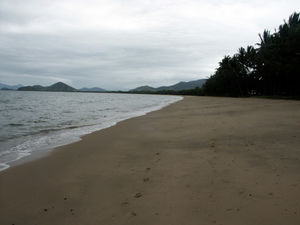 Palm Cove 1/undefined by Tripoto