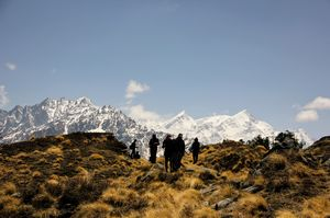 A majestic trek to deep in The Himalayas- Pangarchulla Peak