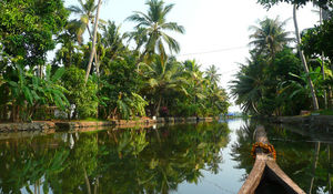 Alleppey Backwaters Kerala - Experience of a lifetime!