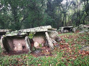 Megalithic structure - A Stone age architecture found in Kotagiri