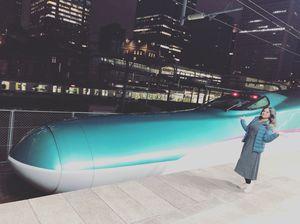 Japan Rail Pass-Shinkansen Travel-Ride of Life!!!