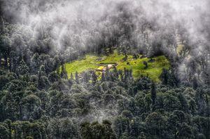 Chopta: Mini Switzerland of India