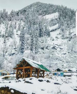 """When snow falls, nature listens."" Theme: Snow #besttravelpicture #tripotocommunity"