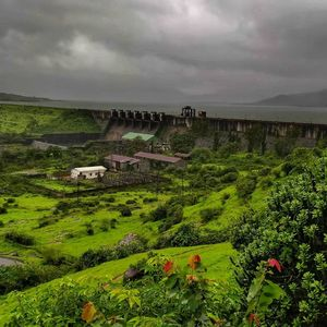 How the monsoon in Western Ghats made me an absolute fan of Maharashtra...
