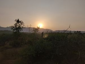 Road Trip from Gurgaon to Sariska