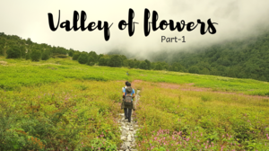 Valley of flowers - A special one