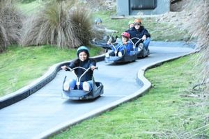 Luge Ride - A Fun Filled Adventure
