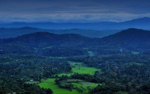 Kabbe Hills, Coorg : A place worth exploring with family !