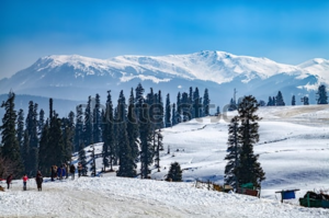 7-Day Itinerary To Explore Kashmir With Family !