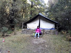 Into the woods: Camping in Mukteshwar