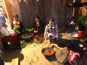 Nagaland : Hornbill