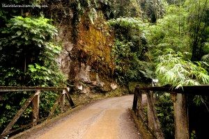 Sikkim Diaries-I The Road North