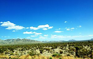 On road from L.A to Nevada.