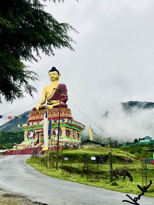 """The best moment in Tawang"""""""