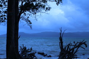 Andaman Part 2 - Blissful days at Neil Island and Port Blair