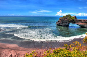 11 Unbelievable Things To Do In Bali That You Can't Experience Anywhere Else