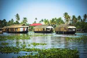We're Destroying Nature One Mistake At A Time And Kerala's Backwaters Are The Next Victim