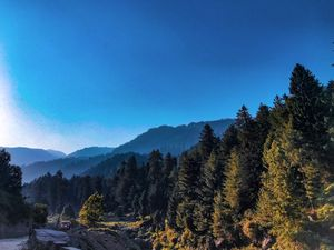 6km From Manali's Madding Crowd, This Hostel Is The Perfect Escape From Delhi