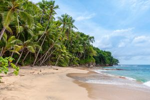 10 Days In Goa Under 10k: Hacking My Way Through The Ultimate Budget Trip