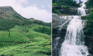 Here's How You Can Explore the Magical Munnar in Under 48 Hours