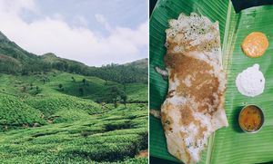 Here's How I Ended up Having the Most Authentic Food Experience in Munnar