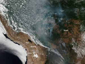 Amazon Rainforests Are Burning & The Destruction Can Be Seen From Space!