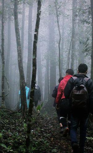 Best monsoon trek in the western ghats_kurinjal peak karnataka