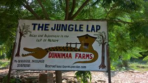 Team Outing at The Jungle Lap, Sariska
