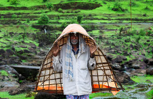 Theme: Portrait  Bamboo Umbrella :People use bamboo water-proofing to save themselves from rain: