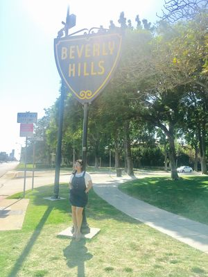 Theme - Streets. Whats better then Beverly hills #BestTravelPictures