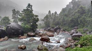 #Fog #Water #Landscape