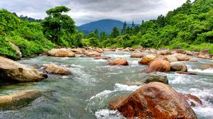 #River #Rain #Hill #Murti