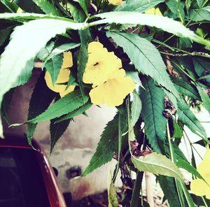 #besttravelpicture #Nature