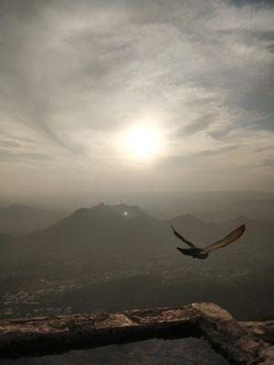 Amazing Rajasthan