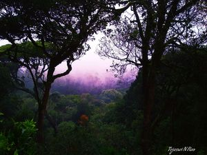Bliss Landscape #Besttravelpictures