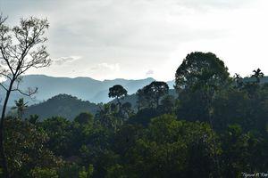 Infinite mountain ranges