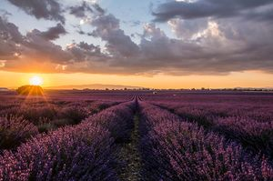 Sunset in a Magical Provence  Landscapes #BestTravelPictures