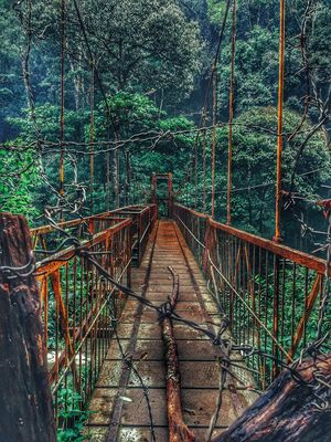The wired way to the unknown-#BestTravelPictures #westernghats #rustic #Ironbridge @tripotocommunity