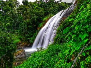 Monsoon beauties of Coorg,Karnataka #monsoondestinations #waterfalls #coorg #kodagu #india