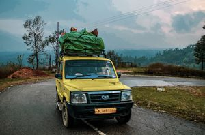 Peeli sumo taxi.Traveling in local transport is one thing you can do if you want to ecotravel.