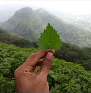 #nature #awesome feeling #feel ur soul