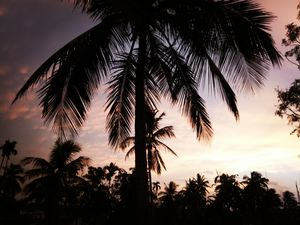 This is the ultimate Beauty of Tripura.  #BestTravelPhoto #contest @jetairways