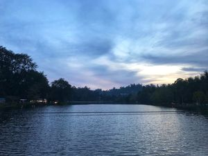 "Kodaikanal: The ""Mist-ical"" love affair"