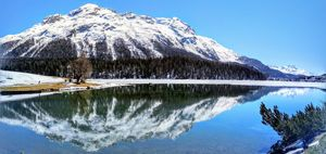 St Moritz 1/undefined by Tripoto