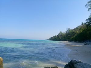 Island hopping with rich corals and aquatic life #Andamans